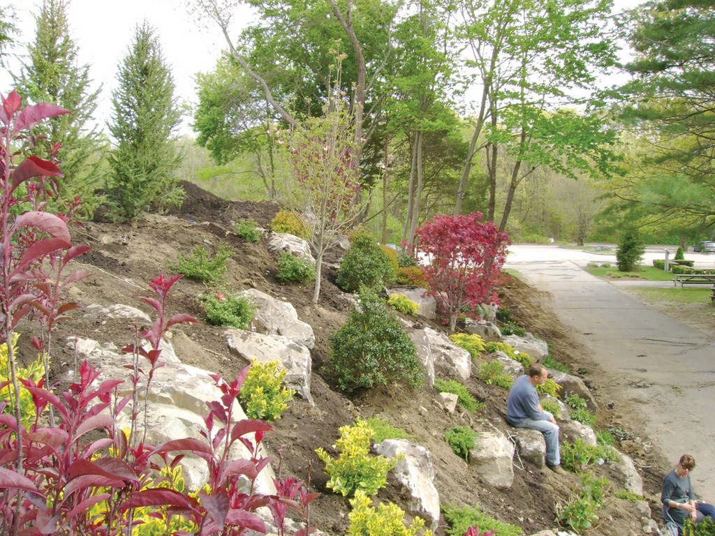 NOW: With the help of Catherine Weaver and Alan Muoio, the hill is now a beautiful garden of trees, shrubbery and decorative boulders.