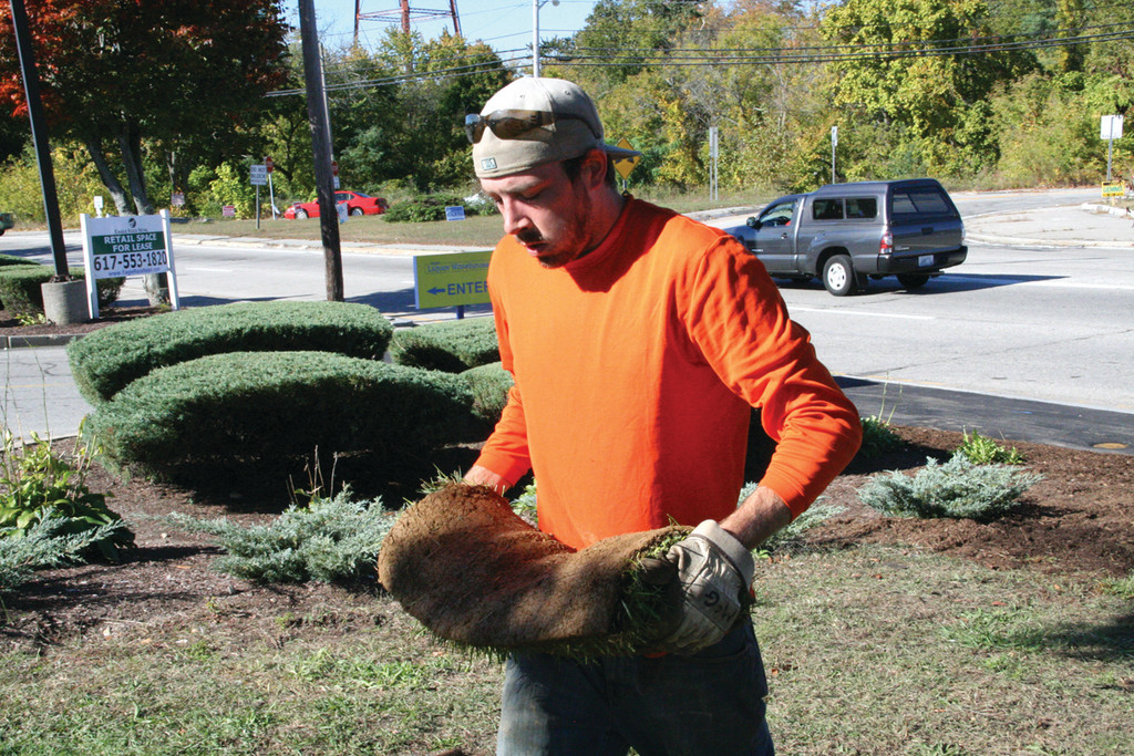 SHOULDERING A ROLL OF SOD: Memorial architect Harvey Wagner assists with final landscaping details on Saturday.