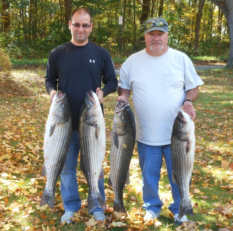 Kevin (left) and his father Albert Bettencourt (both of East Providence) have been catching striped bass this fall in the Barrington Beach area and in the Warren River drifting eels.