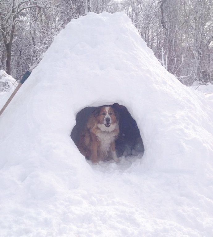 AN IGLOO FOR BEETHOVEN: Christina Markrush of Warwick Neck built an igloo, which her dog Beethoven hangs out in. While the snow can be an inconvenience, she said it's important to remember to have some fun with it.
