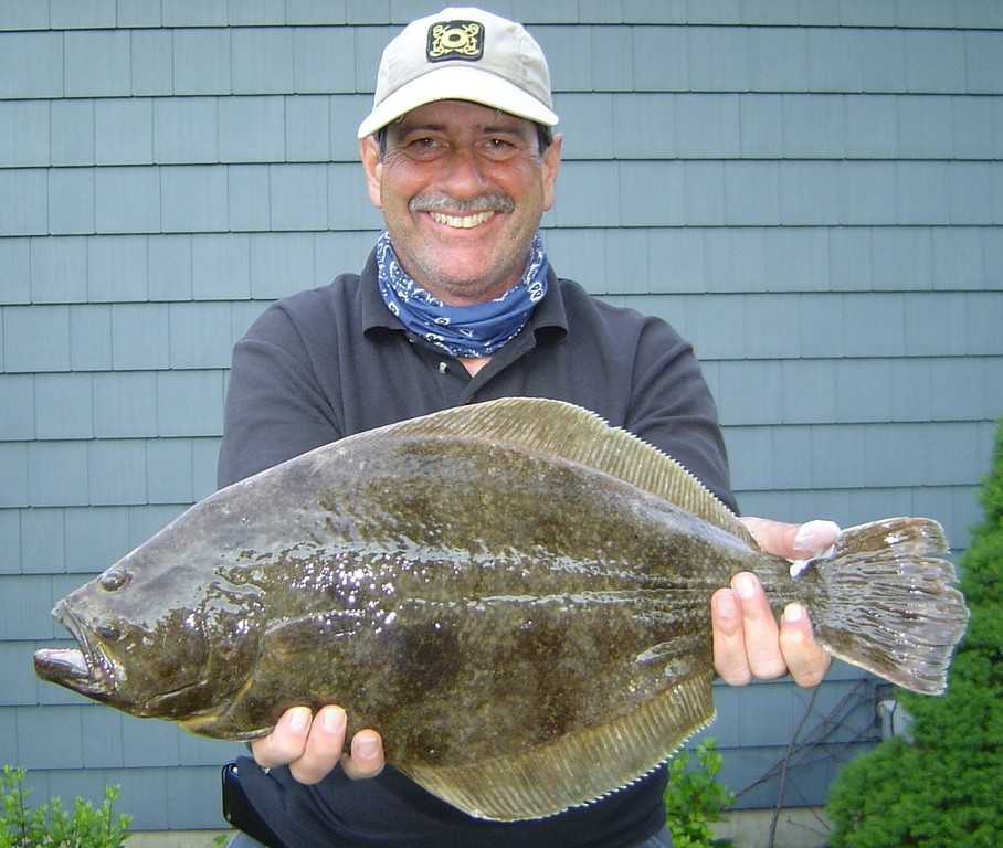Fluke facts and tips from experts cranston herald for Fluke bass fishing