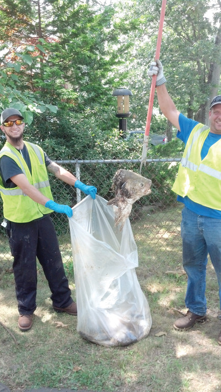 THEIR CATCH: Warwick Sewer Authority workers Vincent Russ Jr. and Joseph Colicchio display some of what they hauled from two storm drains on Manning Street in Oakland Beach on July 17.