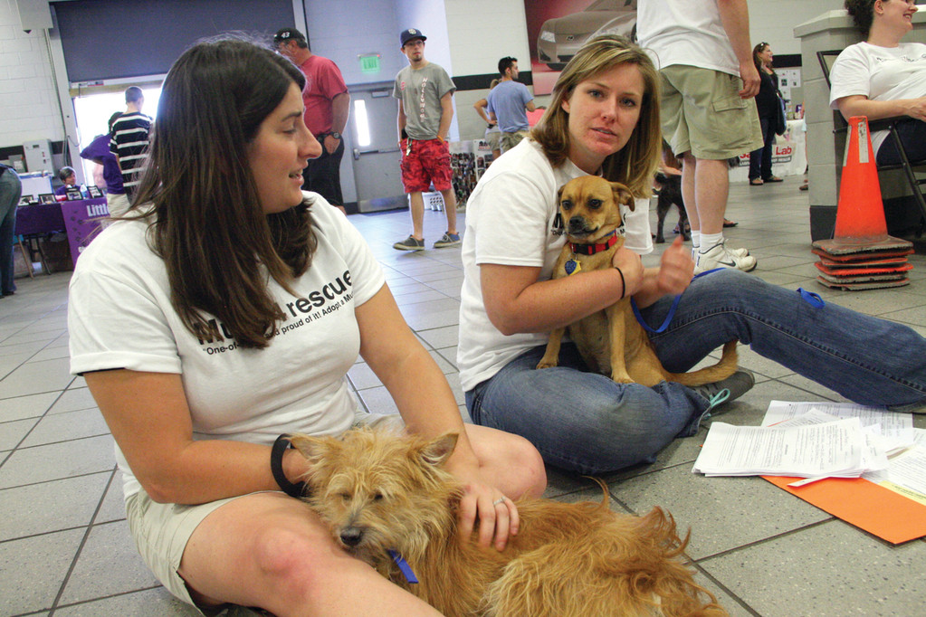 READY TO RESCUE: Chrystal Glynn and Bethany Hickey of Mutts 4 Rescue hold two of 15 dogs they had up for adoption at Sunday's Always Adopt statewide event at Inskip Motors.