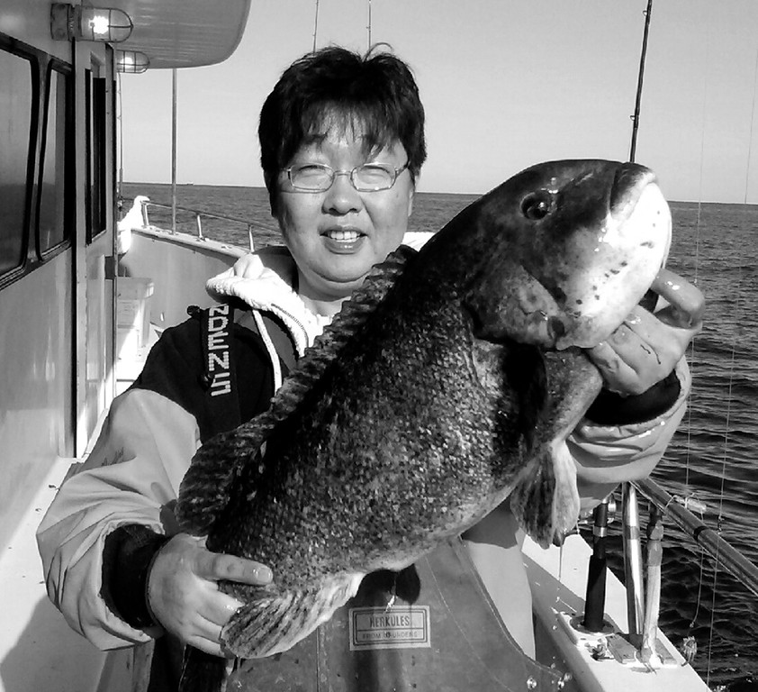 Tautog bite: This 12 pound tautog was caught on the Frances Fleet from Pt. Judith ten days ago by Mr. Cha of Hackensack, NJ.  Photo by Roger Simpson.