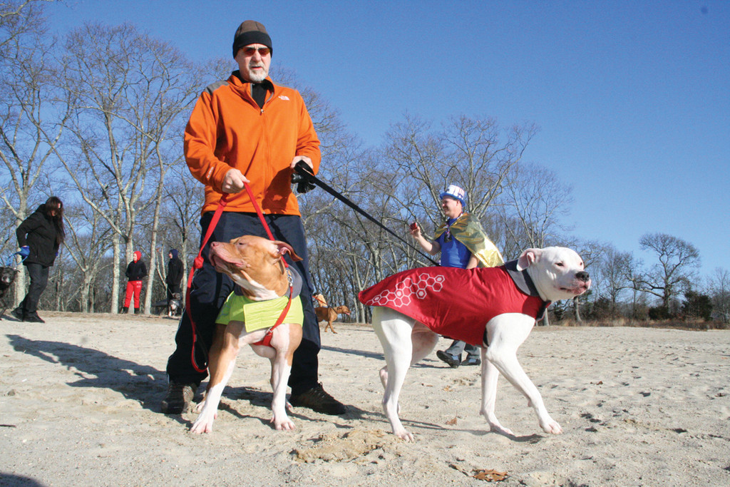 HE WENT IN, THEY STAYED DRY: Jim Patton with his well-clad pit bulls, Moka and Sandi, before he disrobed and took the plunge New Year's Day at City Park.