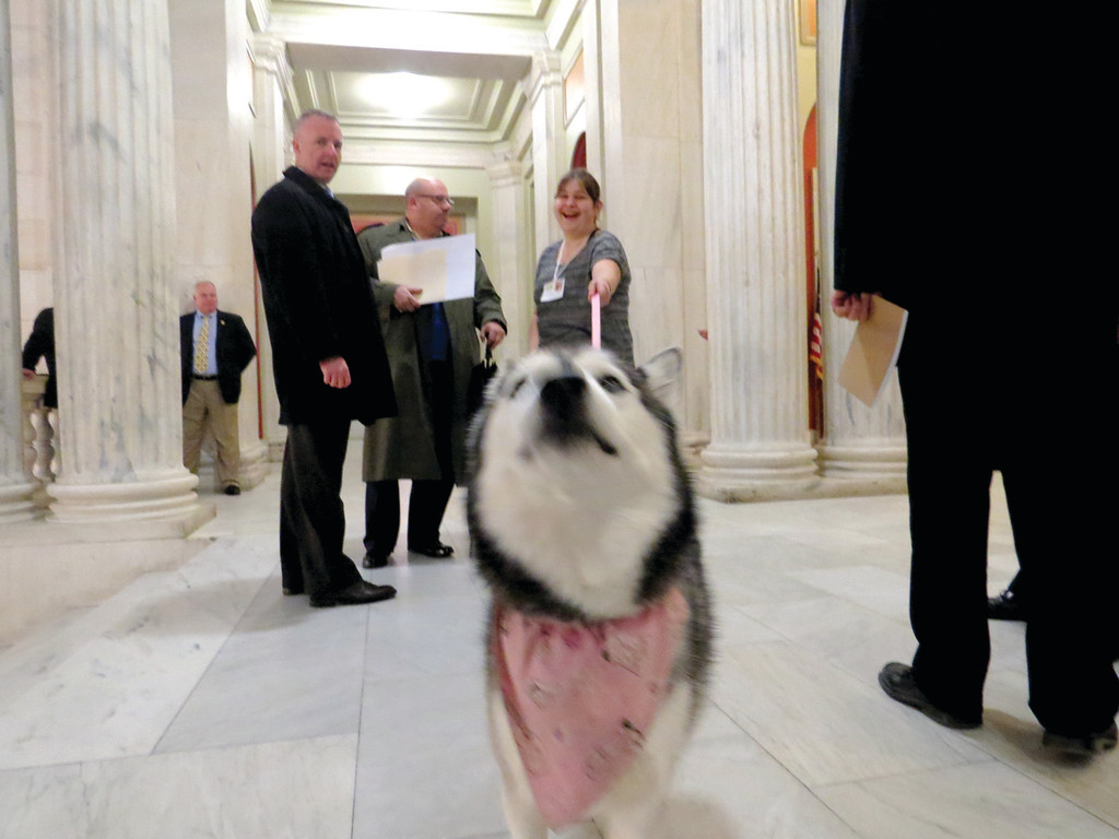 MAKING FRIENDS: Mya was on her best behavior Tuesday at the State House.