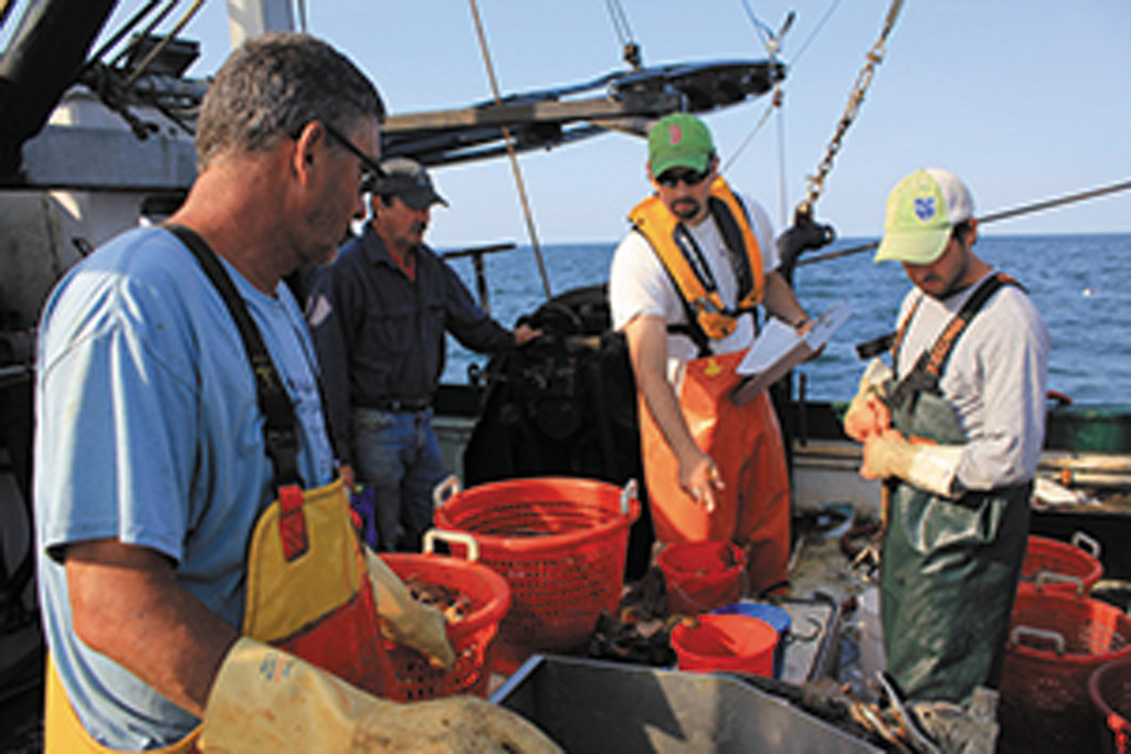 Trawl survey: trawl studies that record what fish are in the area before, during and after construction of the Block Island wind farm will measure if the project is having any positive or negative impact on fish populations.