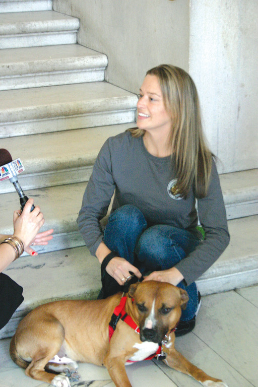 A SAFE PLACE: Amber McNulty is providing a foster home for Famous Amos, one of the animals brought to Rhode Island by Handsome Dan's Rescue. He is McNulty's eighth foster dog.