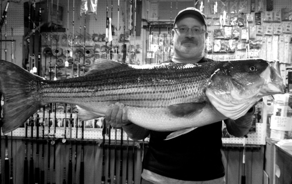 Chunk baits yield big bass: Greg Vespe, with a large striped bass, and Capt. B.J. Silvia will be guest speakers this Monday at a RISAA seminar talking about using chunk baits for striped bass fishing.