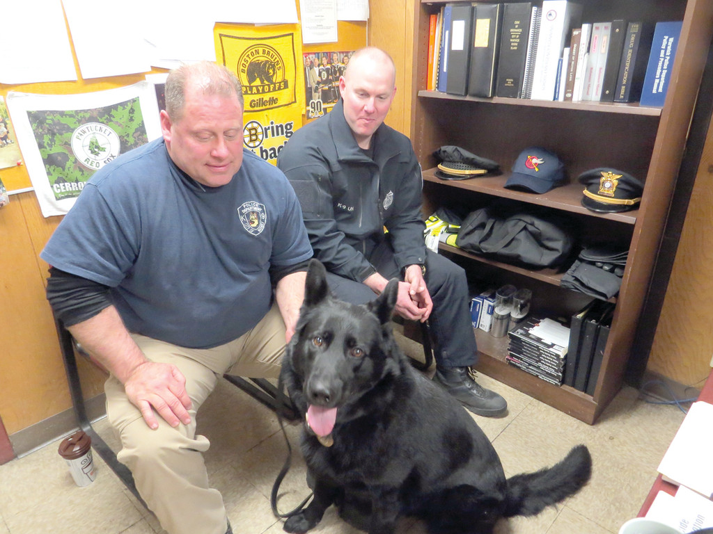 ONE OF THE TEAM: Warwick Police�s K9 team, Officers Paul Wells and Aaron Steere, say although he may look tough, Fox, Wells� canine partner, is as friendly as any other dog in the world when he is not on the job. The officers and their canines have been on patrol about a year and a half, and have proven to be valuable assets to the department.