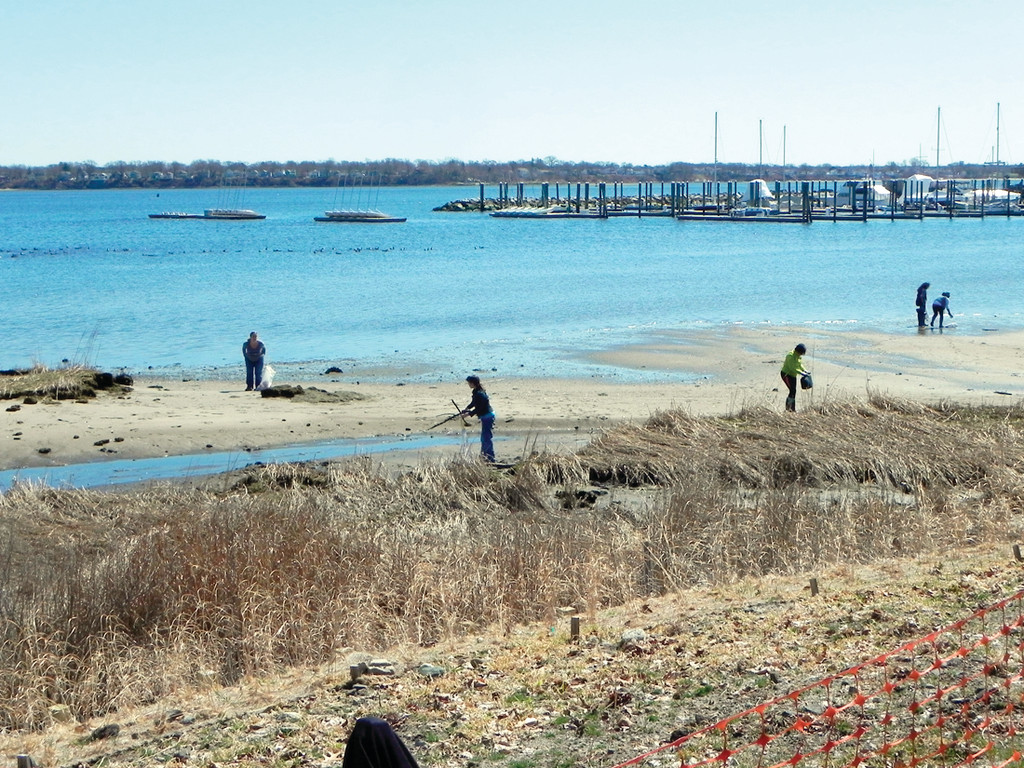 PERFECT DAY: Conditions were ideal for Saturday's annual cleanup at Stillhouse Cove.