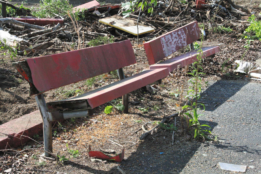 FRONT ROW SEATS: Midway benches have survived since the park closed in 1995, but they won't be there for long.