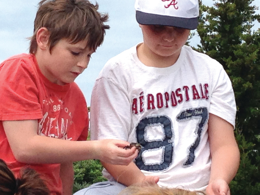onnor Williams and Kaden Madden, examine a small crab found at Rocky Point.