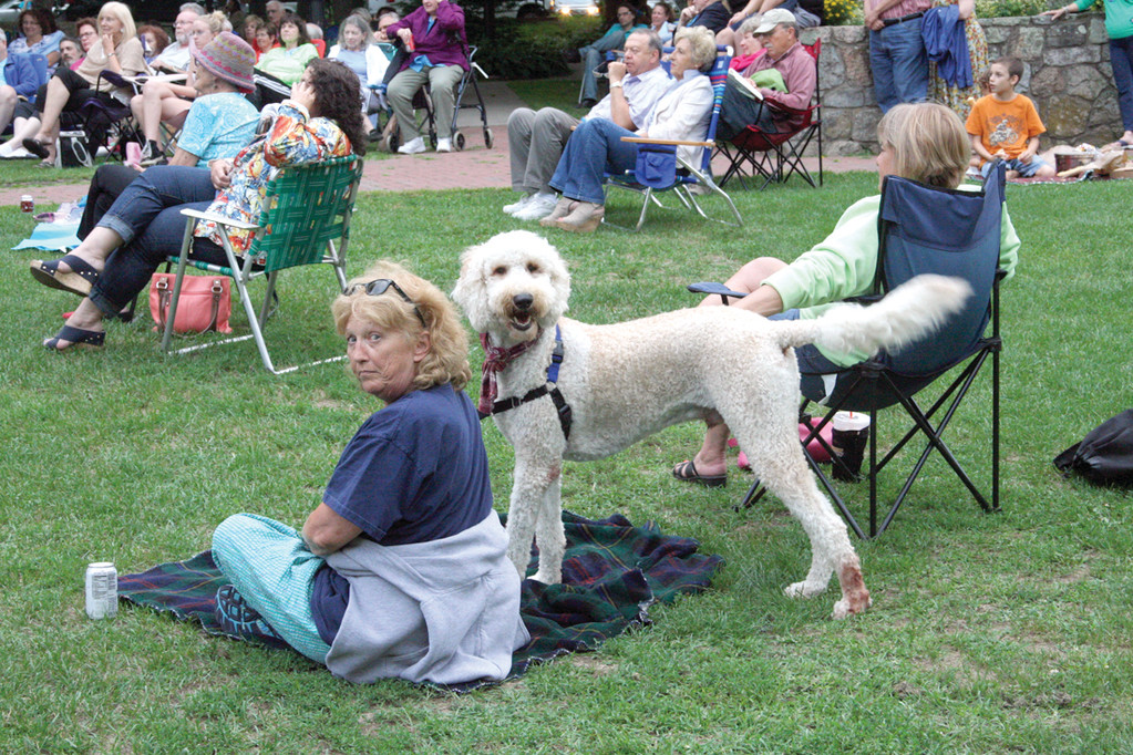 EYE ON THE CAMERA: Sue Reed and her golden doodle, Reed, found a good seat away from the rest of the audience.