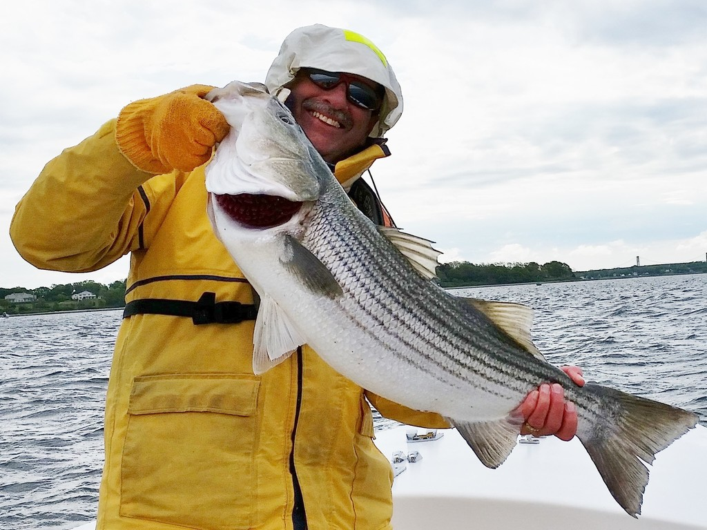 Capt. Dave Monti with an early spring striped bass caught drifting Atlantic menhaden chunks off Bristol when Naragansett Bay water turned 55 degrees.