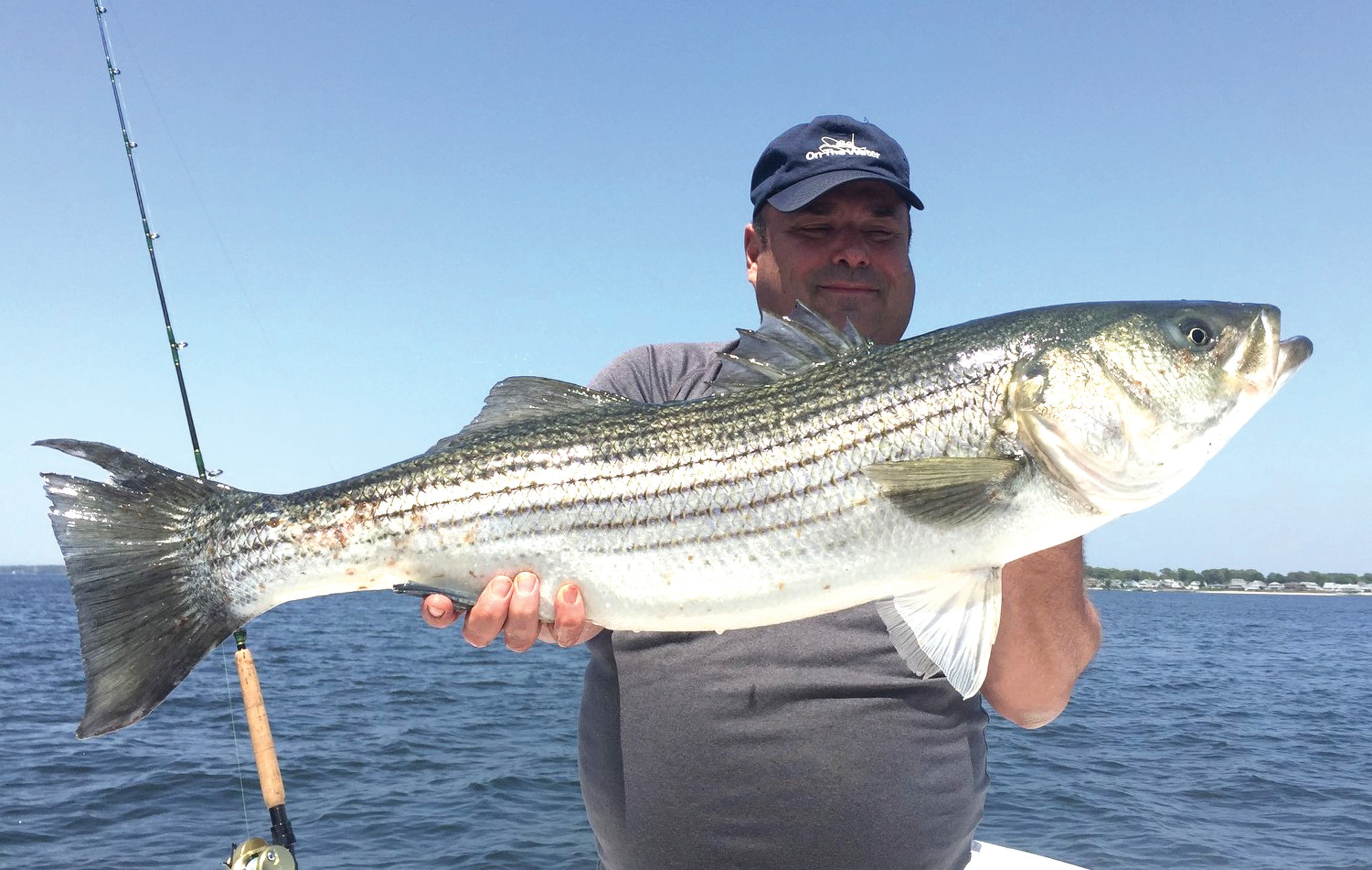 Bear Stripers striped bass fishing lights up | warwick beacon