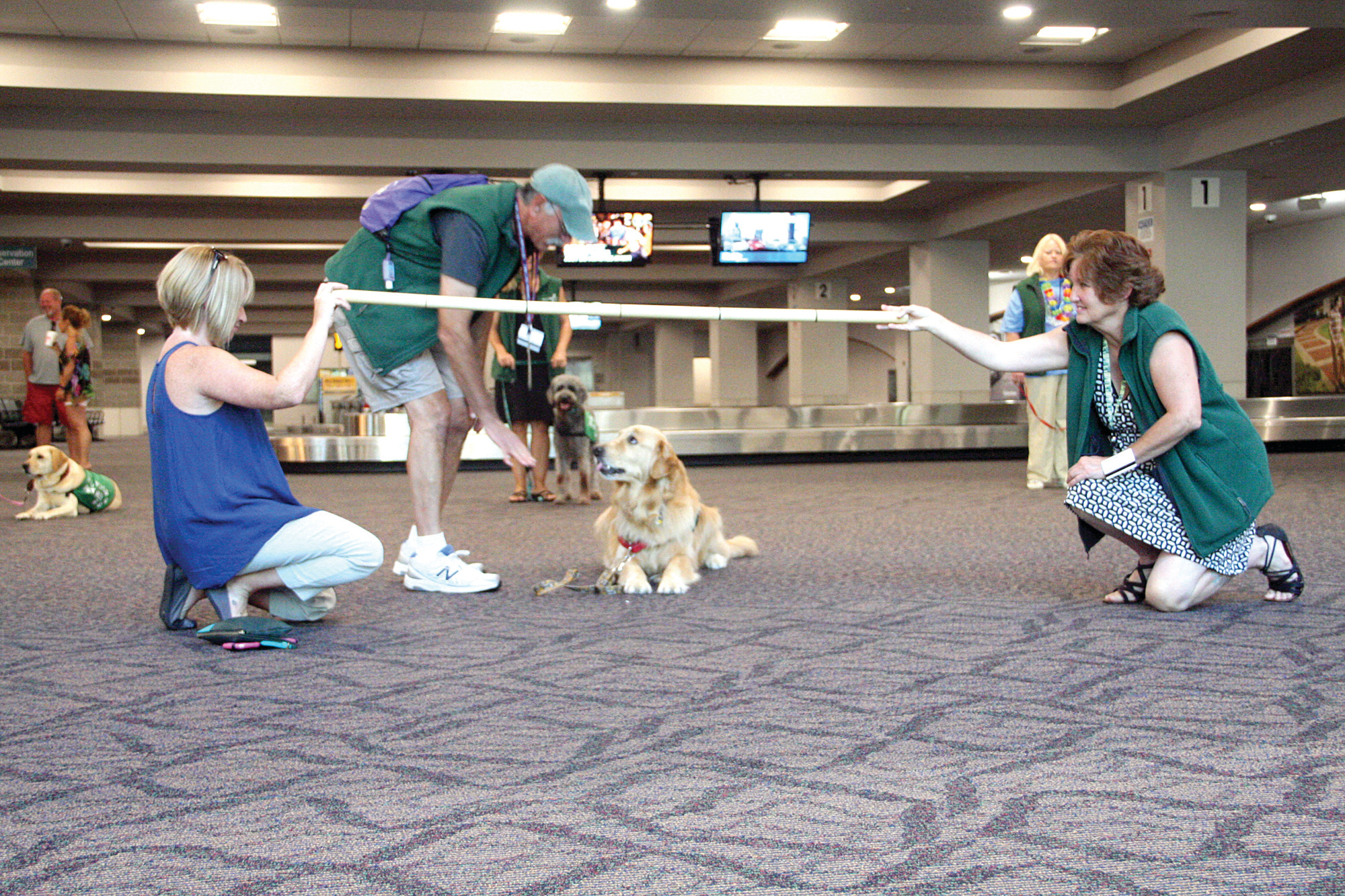 WELCOME TEAM: Green Airport visitors are reminded how pet-friendly Rhode Island is when they meet up with the volunteers from PVD Pups and their dogs. In order to qualify for the program, the dogs are required to complete extensive training that demonstrates their ability to follow commands and get along with crowds.