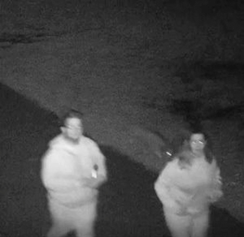 SUSPECTS: Police released this photo of suspects believed responsible for graffiti at Veterans Junior High School.