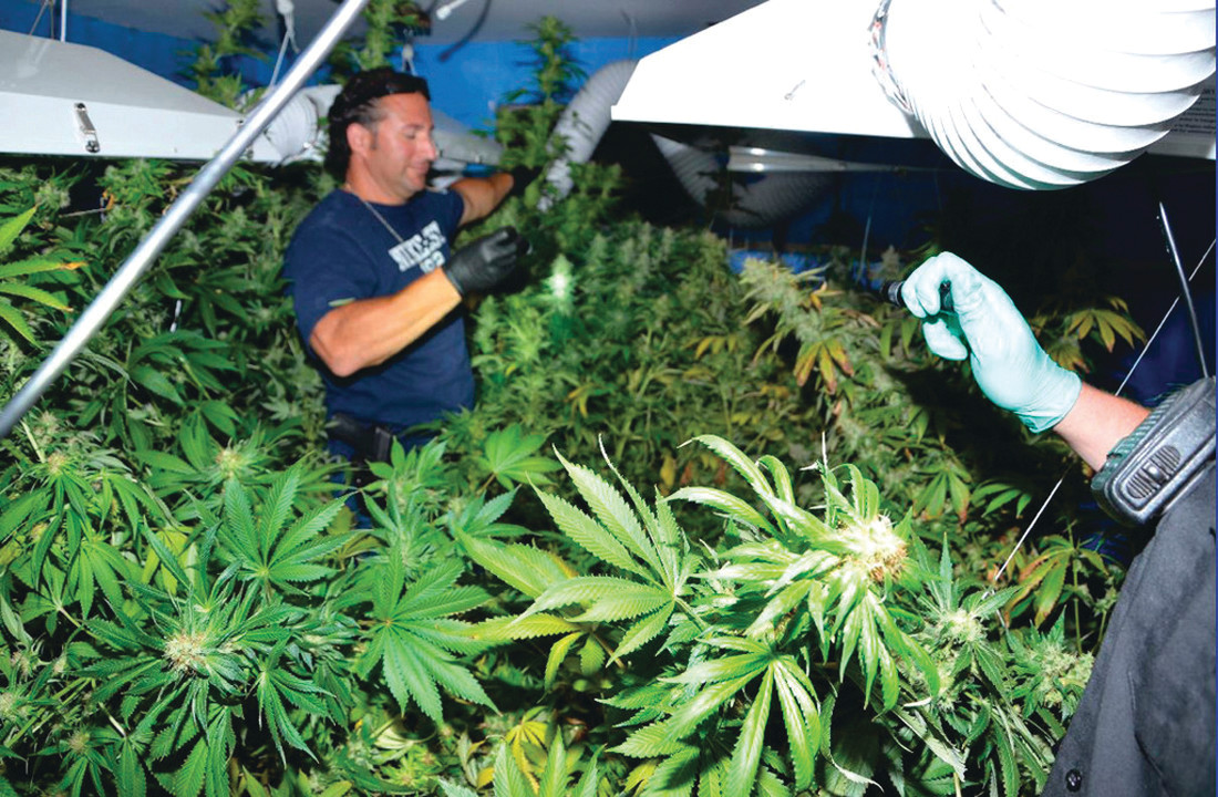OPERATION UNCOVERED: The Johnston Fire Department last year notified police of a marijuana growing operation on Winfield Road following a smoke and carbon monoxide detector inspection.