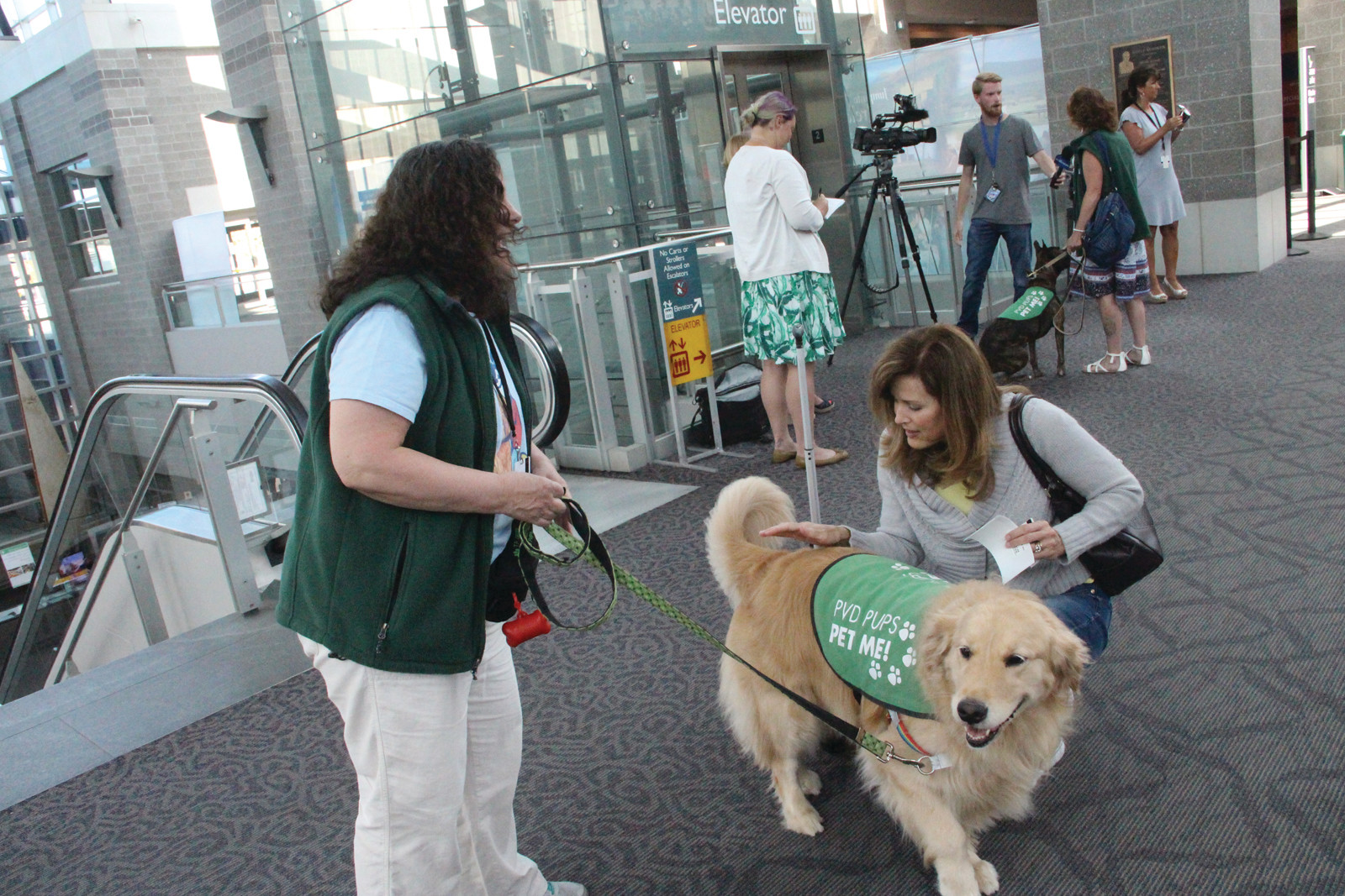 Pet Me: As handler Laurie Cary looks on, Golden Retriever Fenway gets a few pats from Jennifer Nelson from Austin, TX, who owns three goldens of her own.  Nelson is traveled to Rhode Island for a tech conference, and is inspired to start a similar program at the airport back at home.
