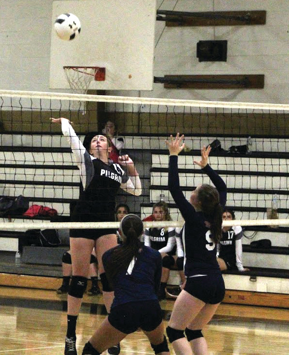 RISING UP: Pilgrim's Ashley Ferreira elevates and tries to send a shot past Toll Gate's front line on Friday.
