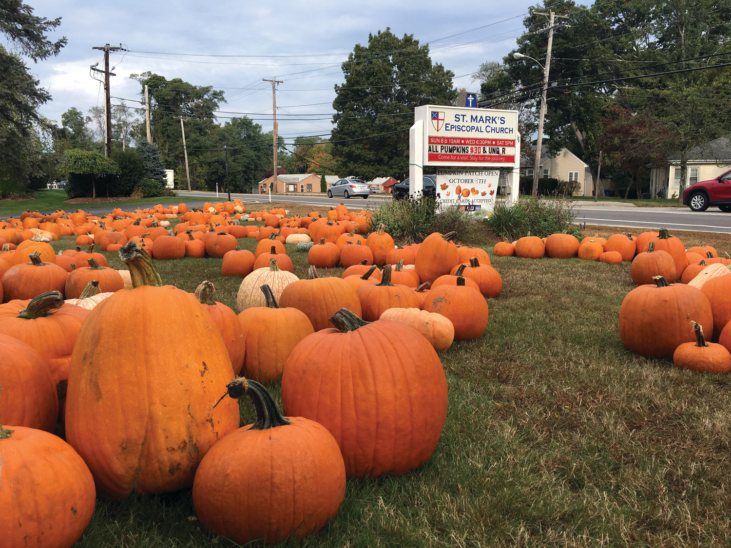 SMALL, TALL, ORANGE AND ALL: A huge variety of pumpkins and gourds are available, from pint sized green and yellow to the traditional massive orange type.