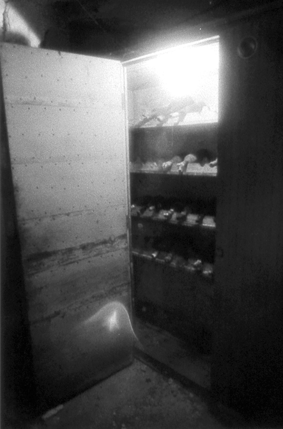 ORBS: Pictured are filmy white orbs captured by Cyril Place (a friend of Bell) taken with an infrared camera in the wine cellar of the Sprague Mansion.
