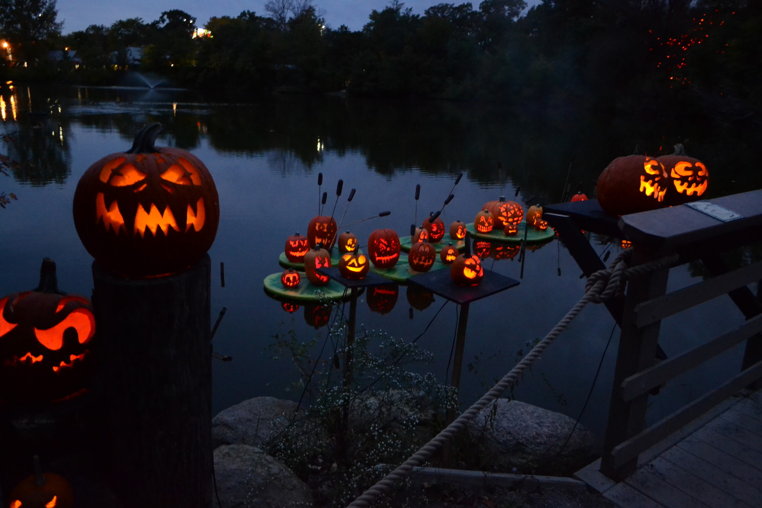 The creativity of the carvers shines on the Roger Williams Park Zoo trail, as they utilize its multiple types of terrain, including the water.