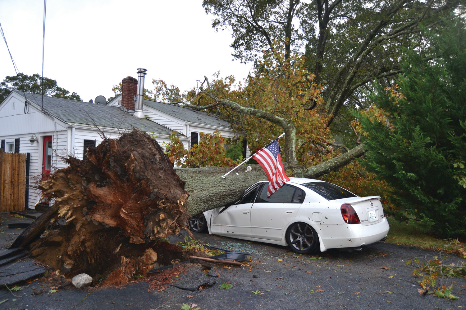 OUR FLAG WAS STILL THERE: This massive oak tree crushed a Nissan Altima and landed on a home at the corner of Asylum Road and Ingersoll Avenue. No one was injured at the residence. The flag which was affixed to the tree remained standing and waving in the heavy storm winds.