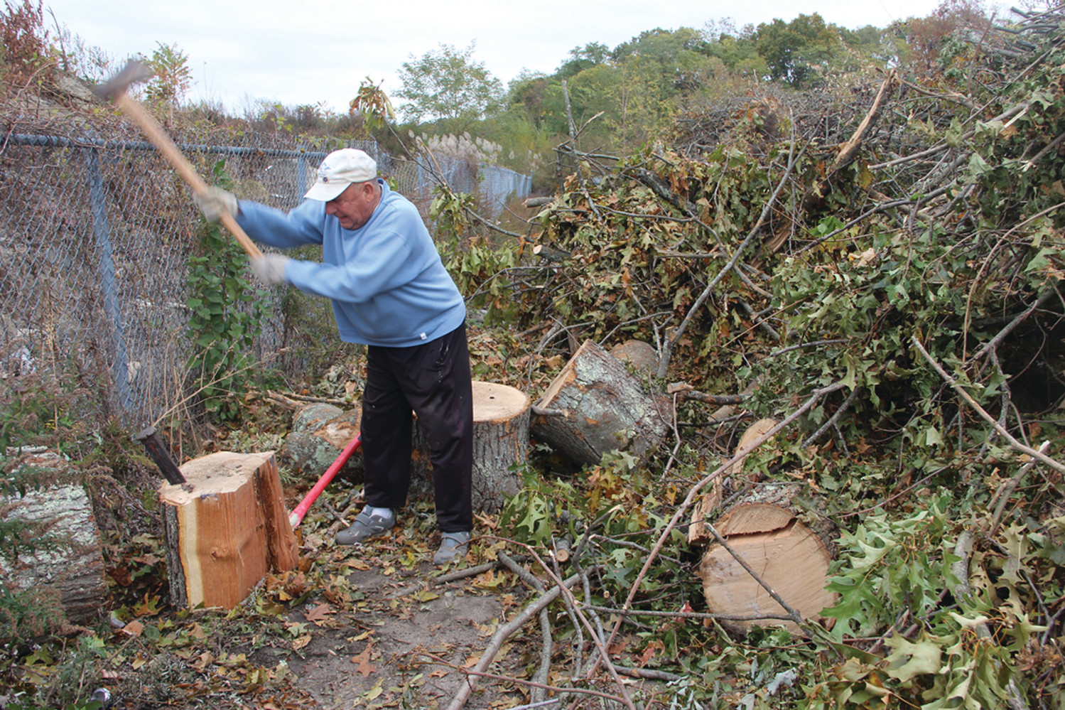 FIRE WOOD: Manny Silva, 78, splits logs outside the city compost station, where a mountain of storm debris has been piled pending chipping. He was anxious for the exercise and to save on wood for his stove.