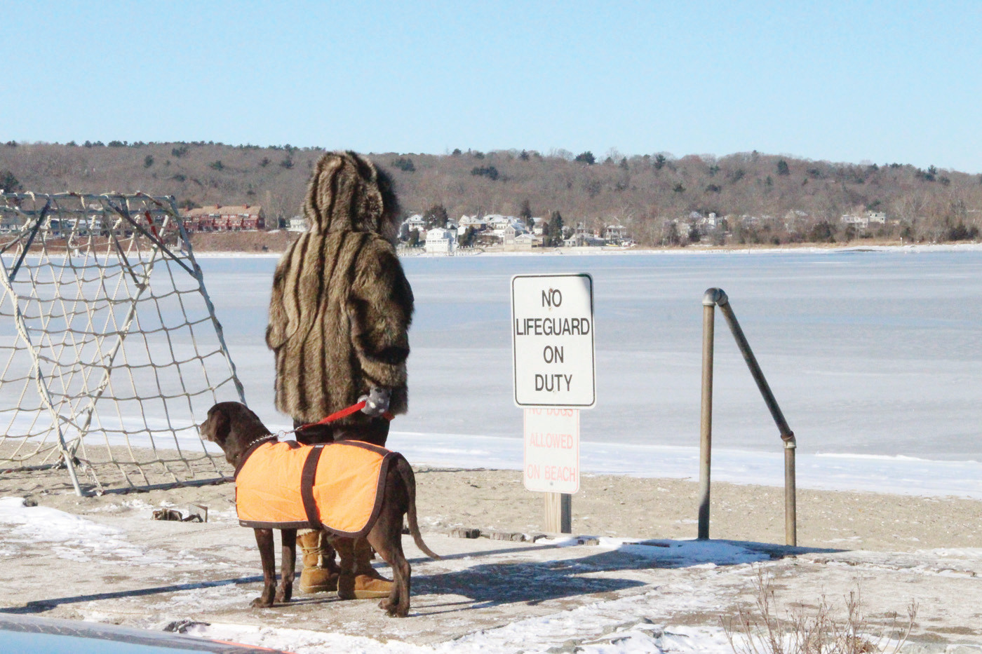 BLEAK SCENE: A spectator and her dog take in the frozen scene at Monday's event.