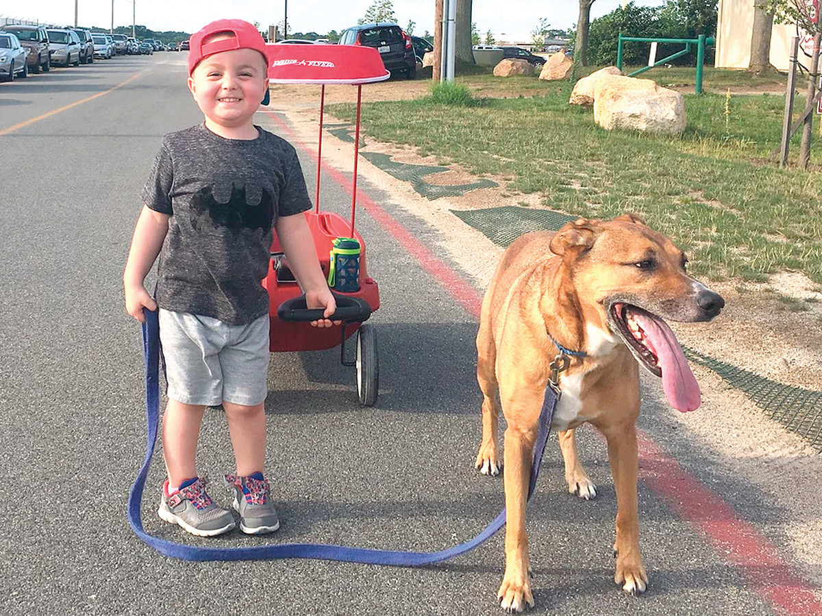 "ENERGETIC AND SPIRITED: Davis' mom Amanda calls him a ""spirited little boy"" despite battling brain cancer and being in isolation at his house for the past 46 days. His radiant smile shines in this picture from last summer with his canine pal."