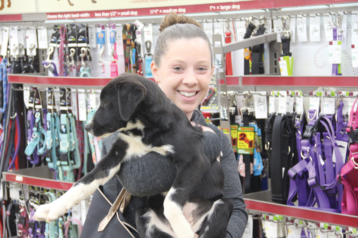 JOINING THE FAMILY: Kendra Shakan cuddles her latest adoption. She and her boyfriend, Daniel Labrie, adopted a dog from STARS about a year ago. On Saturday they added to the family.