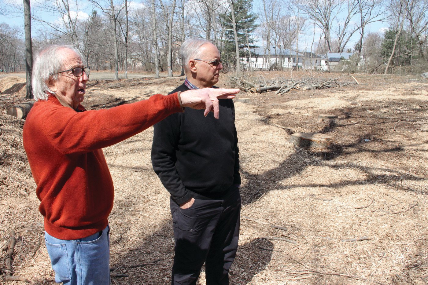 MISSING TREES: Maury Ryan and Tom Wisniewski look at the cleared lot across from their homes on Landsdowne Road, where more than 40 trees were cut down last week.