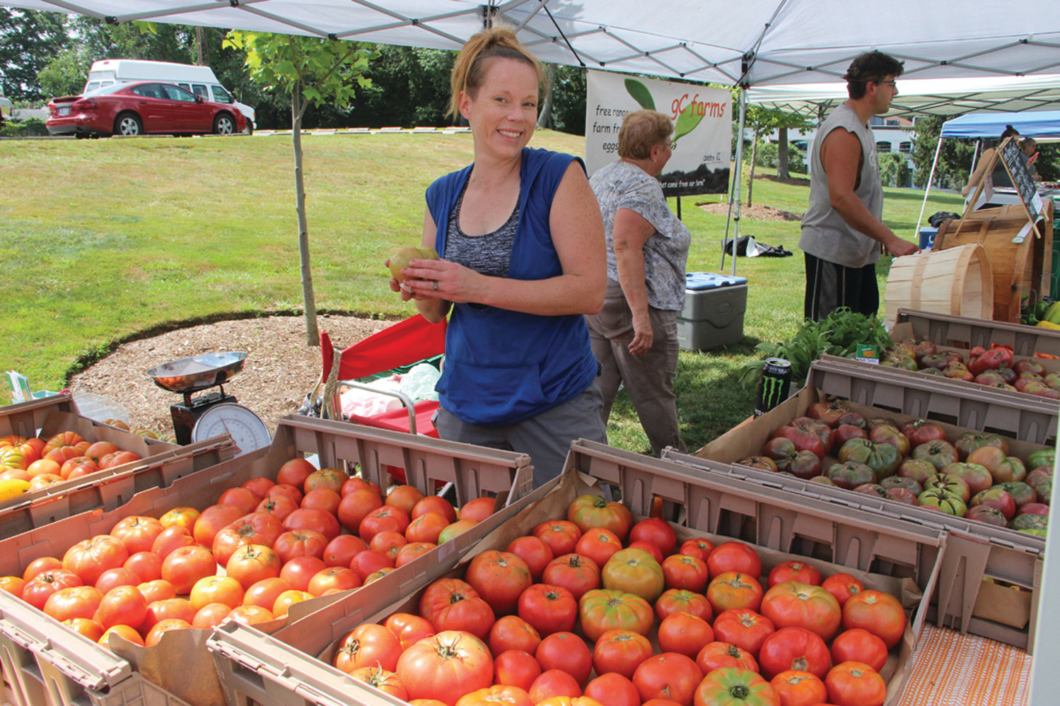 POLISHED TOMATOES: Gwen Mezak displays freshly picked tomatoes offered by gC Farms at the Pawtuxet Farmer's Market at Rhodes Place.