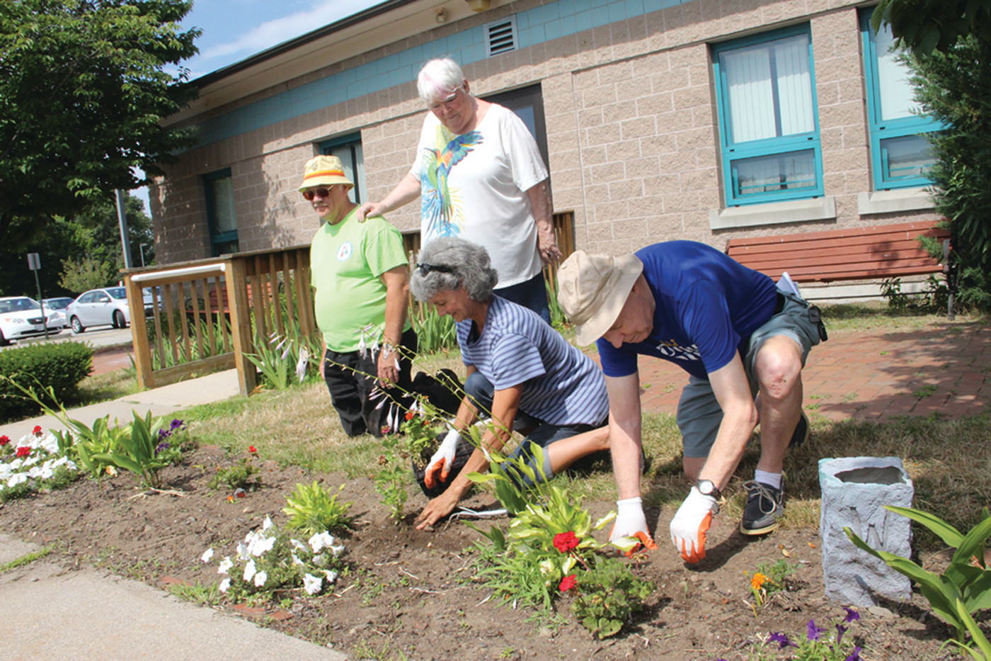 "OPERATION REPLANT: The ""Late Bloomers"" (George Morgan, Gail Felix, Jan Burza and Harry Fogell) work to replace flowers in the area where an unknown thief pulled their plants."