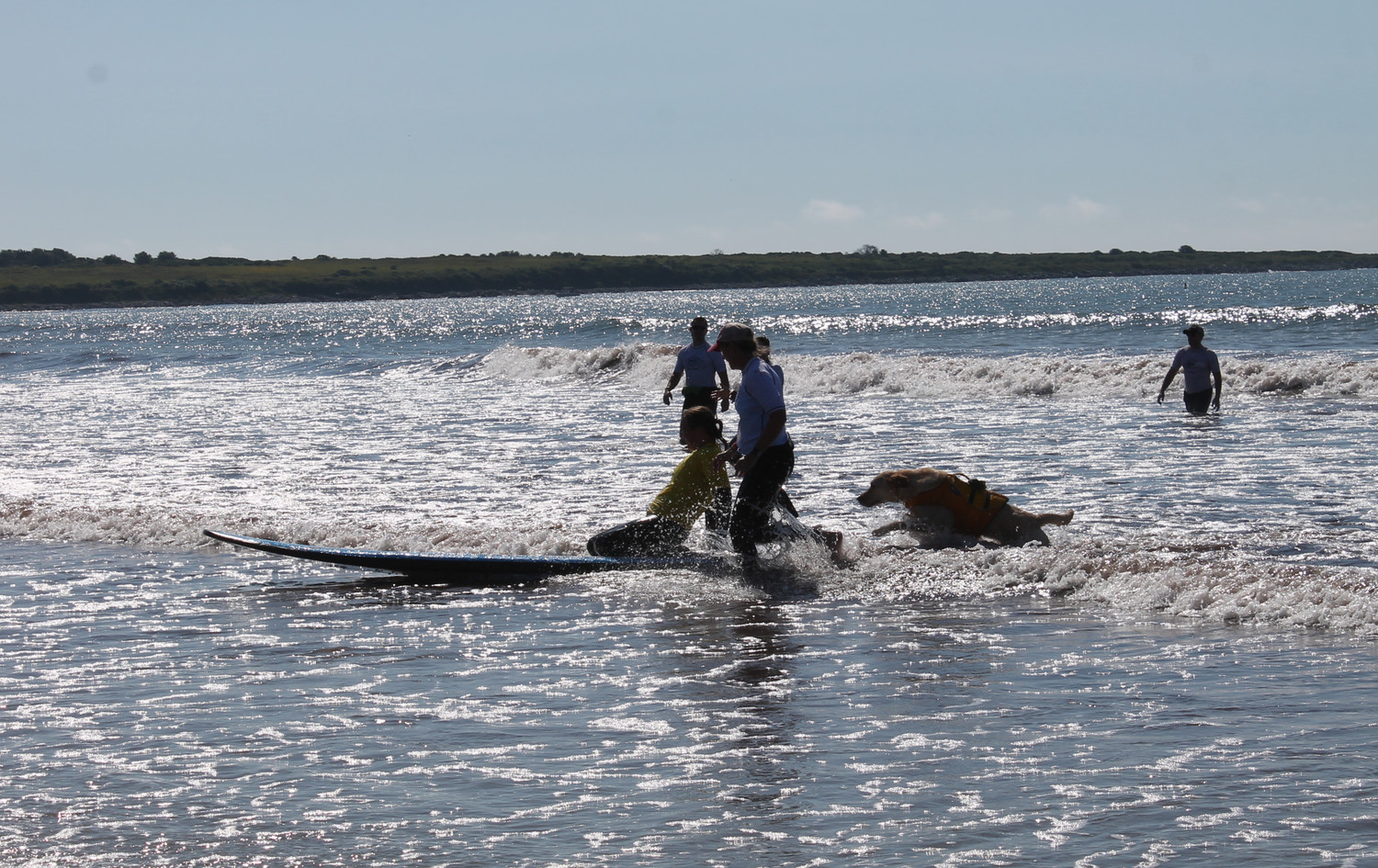 Even the dogs had fun jumping in the waves and surfing with their owners during AmpSurf's event on Saturday at Second Beach