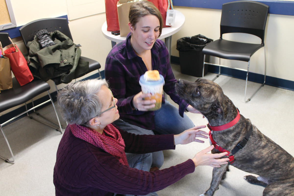 DINNER IS SERVED: Stephanie May (center) of the RI Pet Connection Foundation presents Hunter from the Cranston Animal shelter with his home cooked Thanksgiving meal. Rocky Langford (left) of RI Against Animal Abuse & Cruelty watches Hunter as he gets ready to enjoy his meal.