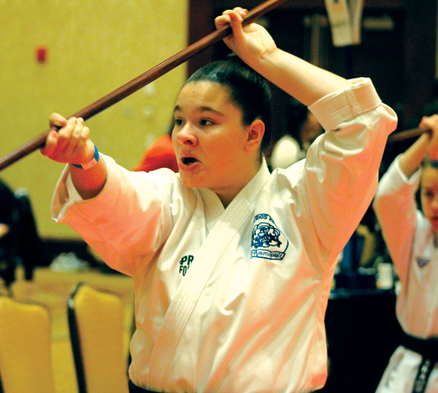 BIG STAGE: The Don Rodrigues Karate Academy hosted its 39th annual Ocean State Grand Nationals at the Crowne Plaza in Warwick over the weekend, hosting some of the top talent in karate spanning across over 30 US states and seven different countries. Here are some photos of the action.