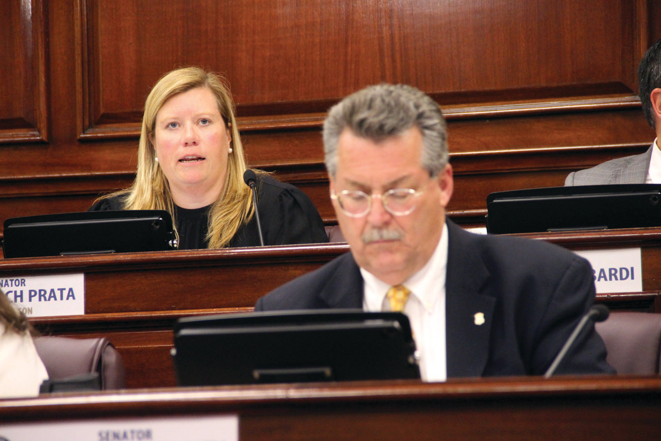 KEEPING THE BILL ALIVE: When it appeared that Republican ex officio members of the Judiciary Committee could kill a revised Reproductive Privacy Act, Chairwoman Erin Lynch Prata transferred the bill to the friendlier Health and Human Services Committee. In the foreground is Sen. Mark McKenney, who favors the bill.