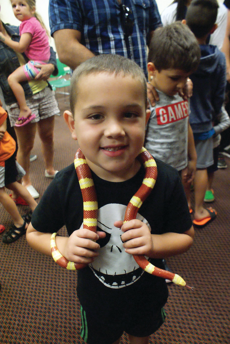 FIRST TIME: Logan Adam, 6, held his first snake – a milk snake called Jellybean – during the Dave Marchetti's Animal Experience program at the Central Library.
