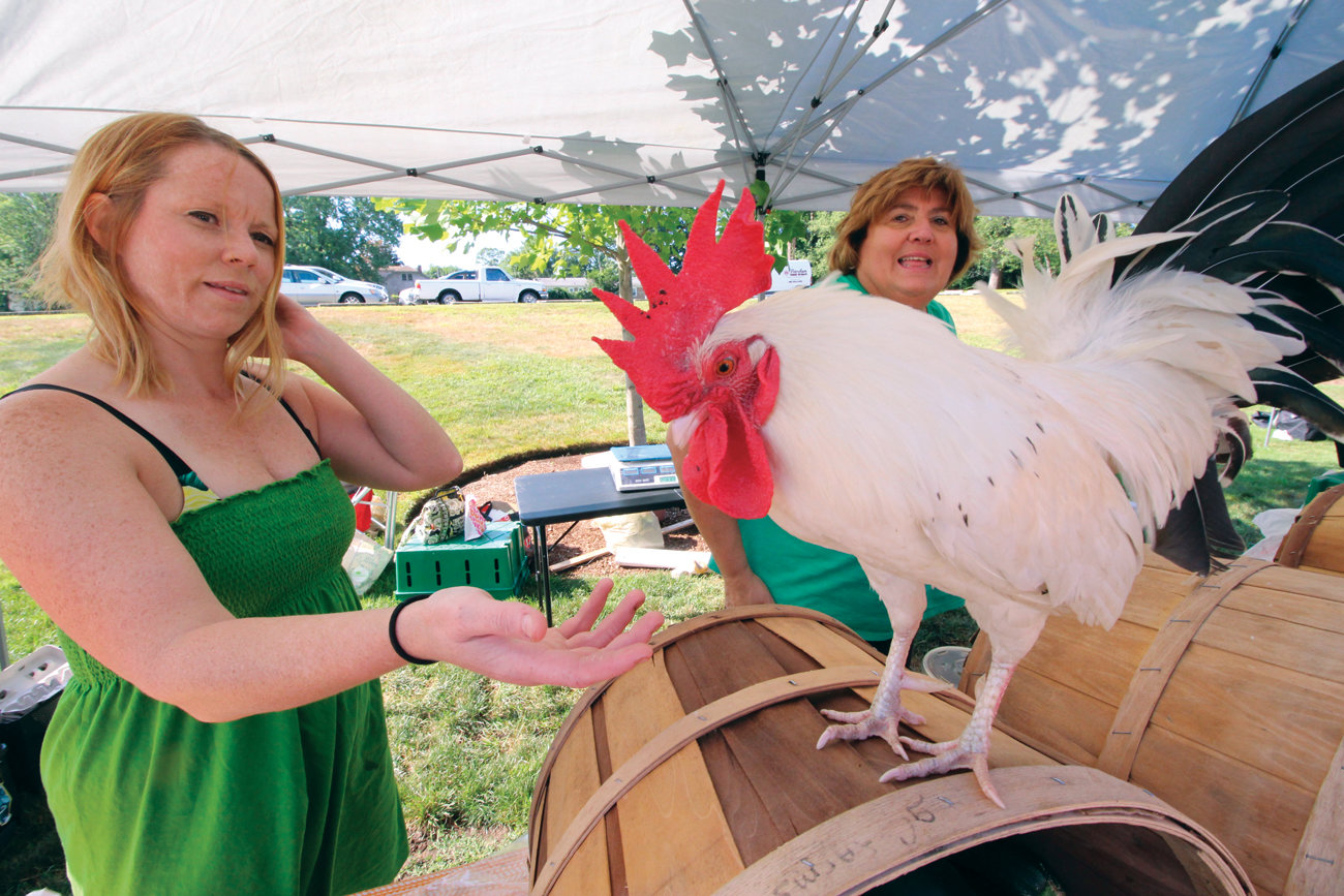 LOTS TO CROW ABOUT: Moe never objects to having his picture taken at the gC Farms of Coventry stand at the market, as Gwen Mezak and her mother in-law, Lucy Mezak, seen here, greet customers.