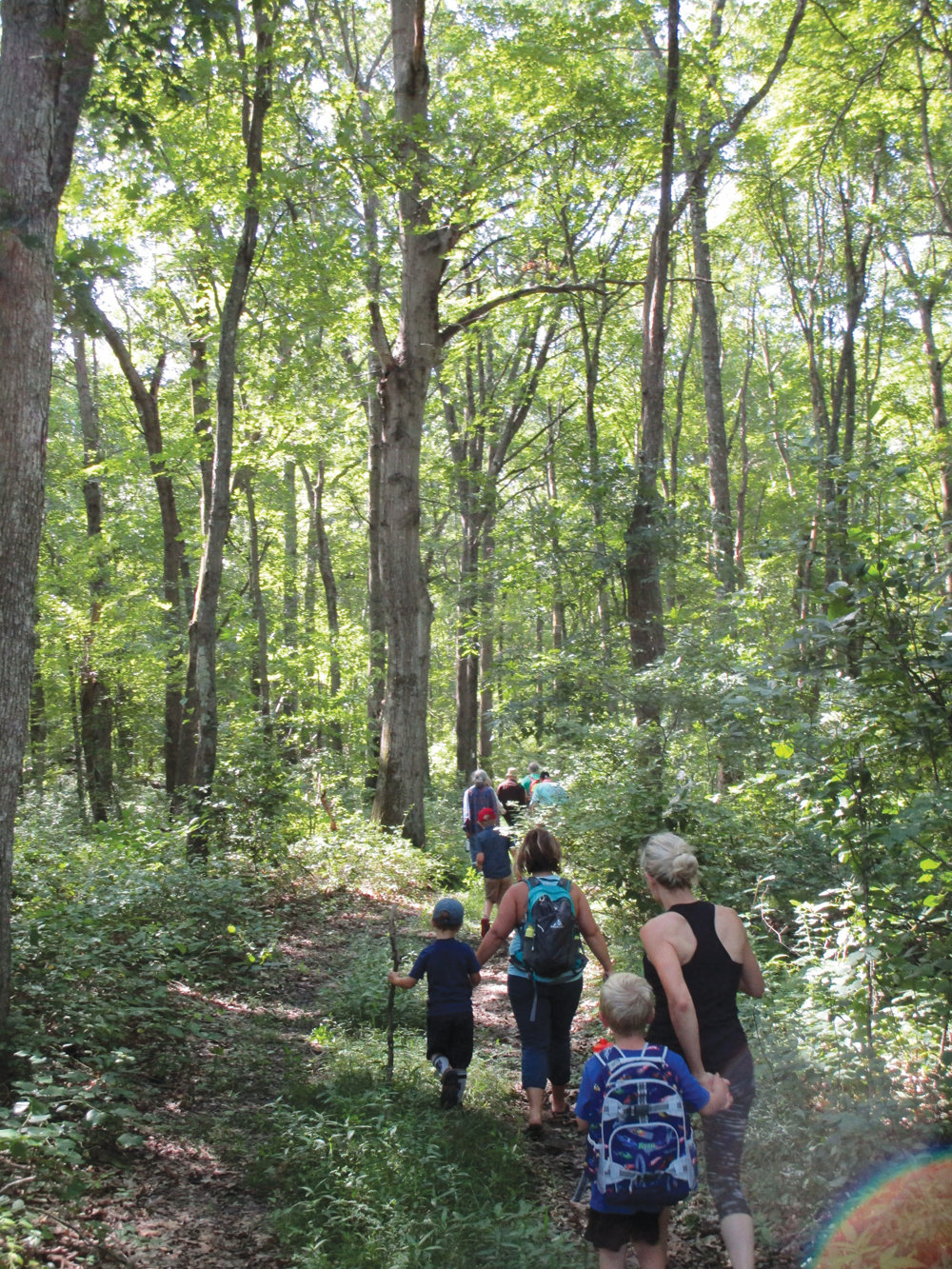 ON THE TRAIL: Hikers take part in a walk along the Knight Farm Trail in Cranston in this August 2019 file photo.