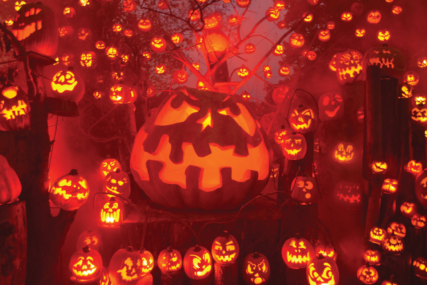 SPECTACULARLY SPOOKY: The annual Jack-O-Lantern Spectacular at Roger Williams Park Zoo is seen in this October photo.