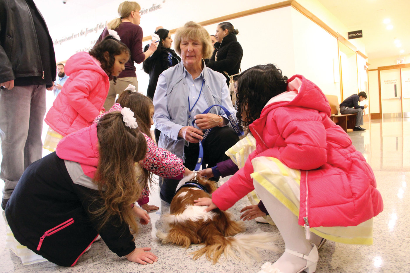 CENTER OF ATTENTION: Meg Schwab, who regularly brings her dog Reidy as a therapy dog to relive stress at Family Court, found many young admirers at Saturday's adoption day.