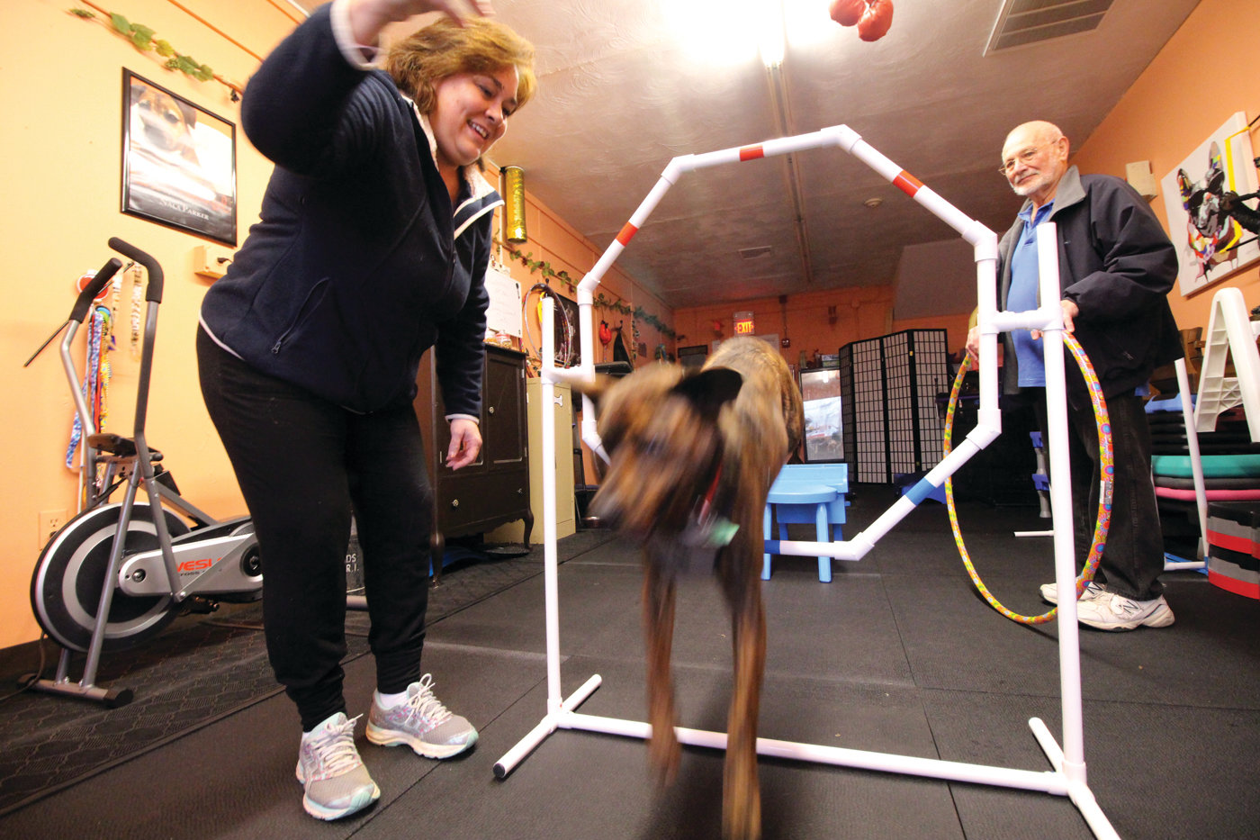 GOING THROUGH HOOPS: Deb Quattrini gets Hunter to leap through a hoop at the Ruff Wrangler Canine Workout Center in Conimicut.