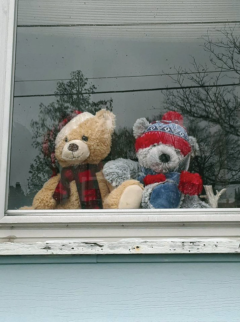 Bears peeking from a window in Cranston.